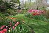 C 04072008 Sisters' Garden, Chapel Hill NC (06-0407, 130p) (garden)