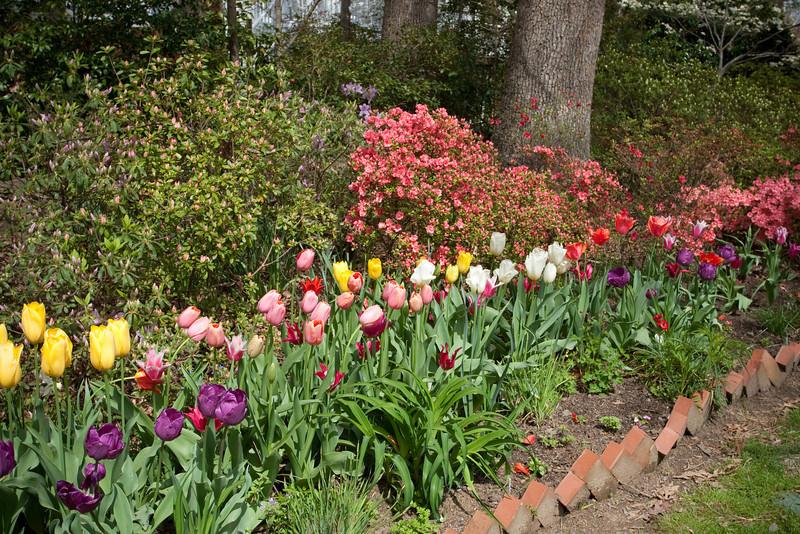 C 04082009 Sisters' Garden, Chapel Hill NC (05-4490, 1126p) (garden)