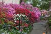 C 04212014 Sisters' Garden, Chapel Hill NC (03-0693, 1945p) (garden)