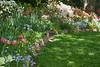 00aFavorite C 04072012 Sisters' Garden, Chapel Hill NC (01-7326, 1218p) (garden) - painted look