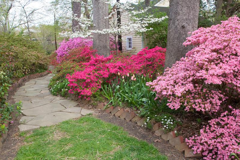 00aFavorite C 04082009 Sisters' Garden, Chapel Hill NC (03-4495, 1132p) (garden)