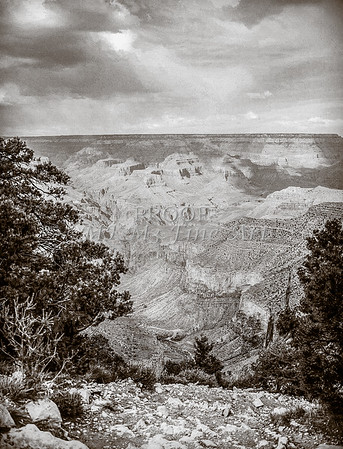 1008.654 Grand Canyon In  Black and White