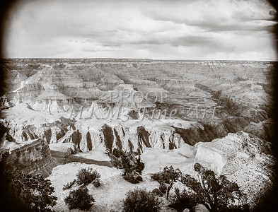 1008.629 Grand Canyon In  Black and White