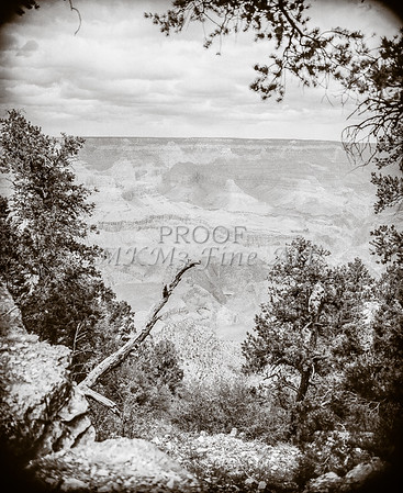 1008.637 Grand Canyon In  Black and White
