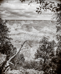 1008.642 Grand Canyon In  Black and White