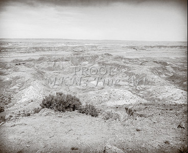 1008.638 Grand Canyon In  Black and White