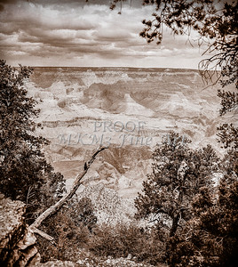 1008.242 Grand Canyon In Antique B&W