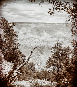 1008.237 Grand Canyon In Antique B&W