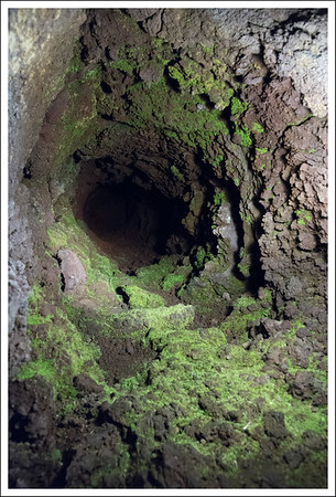 A tunnel caused by lava flowing around a fallen tree, which smoldered and burned, leaving a hole.