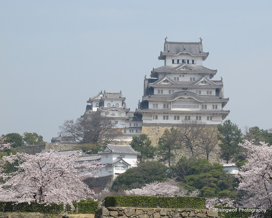Himeji Castle and gardens