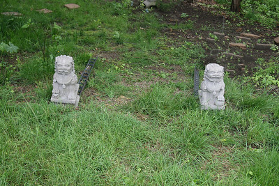 Purchased these Japenese Shi Shi to mark entrance to garden from side yard. The left & right pair are suppose to bring good luck. They will be set more permanently with a pea gravel path down the slight down slope to the pagoda below.