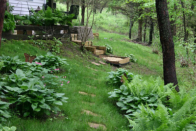 View back toward steps built last summer and patio addition.