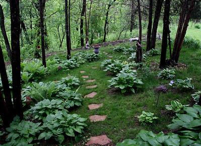 One of two garden paths. New Japenese garden area under development beyond large vase.