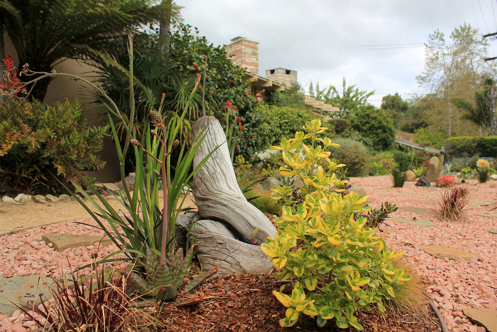 the arizona-meets west la front garden
