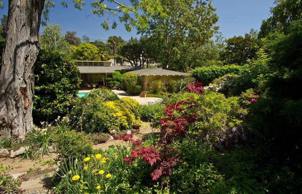 spring back garden