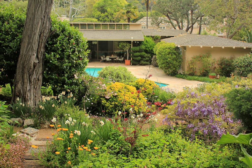 early spring back garden