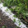 hail storm 2008