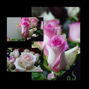 Flowers 001 (Side 1)
