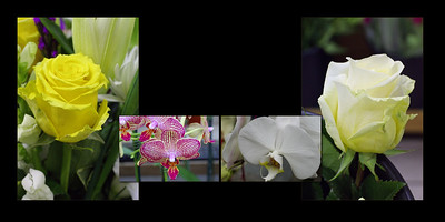 Flowers 011 (Sides 20-21)