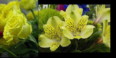 Flowers 007 (Sides 12-13)