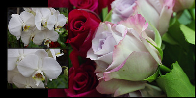 Flowers 008 (Sides 14-15)