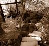 Portland, OR Japanese Garden steps