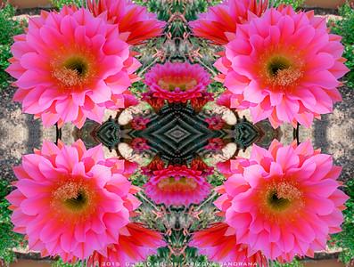 Red Torch Kaleidoscope