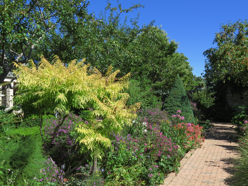Brick walkway in the Garden.