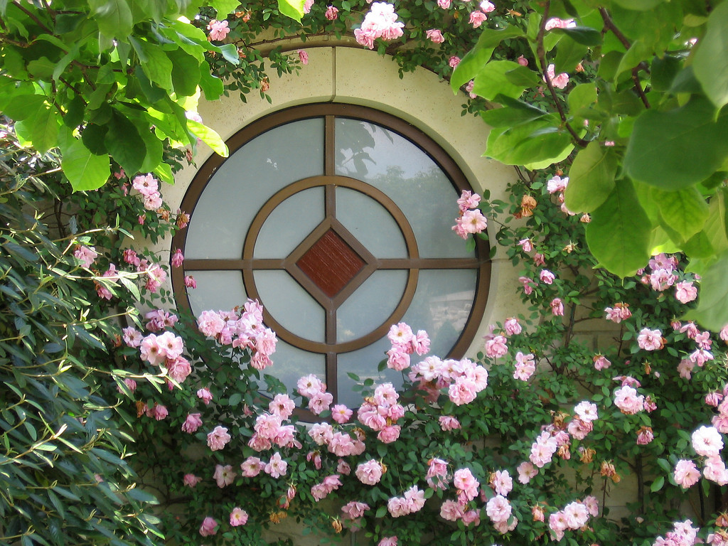 One of the round windows framed by pink roses.