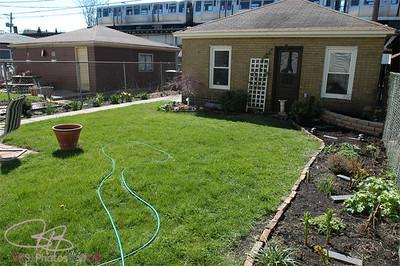 Backyard at Leland 4-13-05