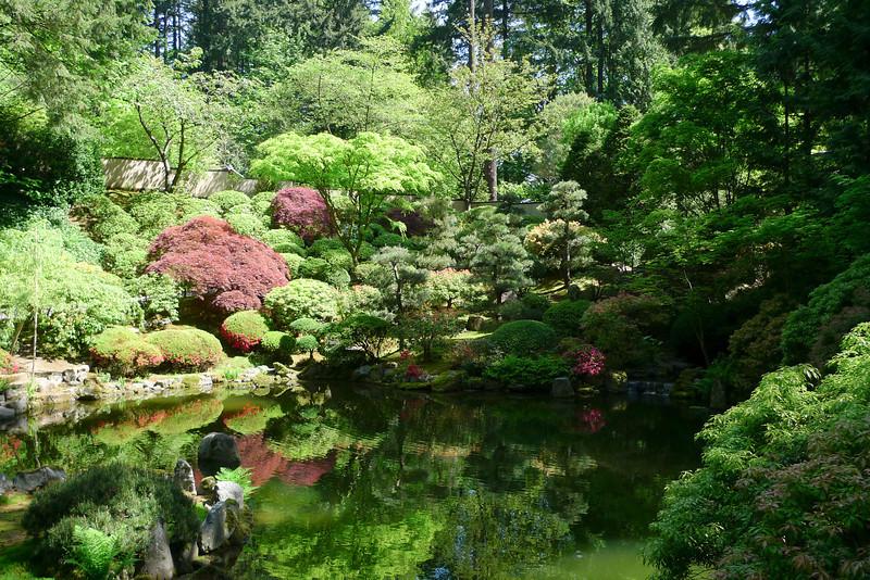Rhododendron garden-1000058