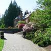 Rhododendron garden-1000054