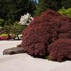 Rhododendron garden-1000067
