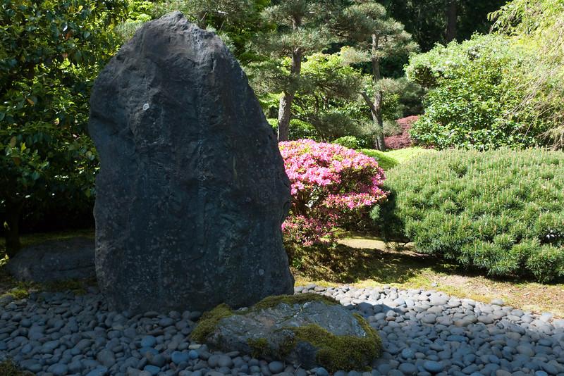 Rhododendron garden-1000063