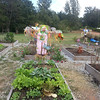 Lilburn Community Garden