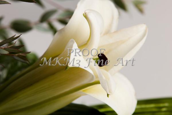 Flower White Easter Lilly 8019.02