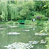 Claude Monet's lily garden in Giverny