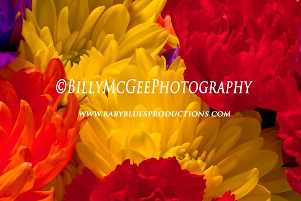 Bouquet of Flowers - 10 Jul 2010
