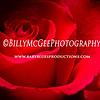 Rose-Petal - IMG-0776