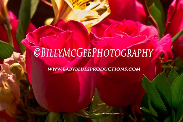 Rose-Couple - IMG-0758