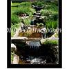 Ladew Gardens 03