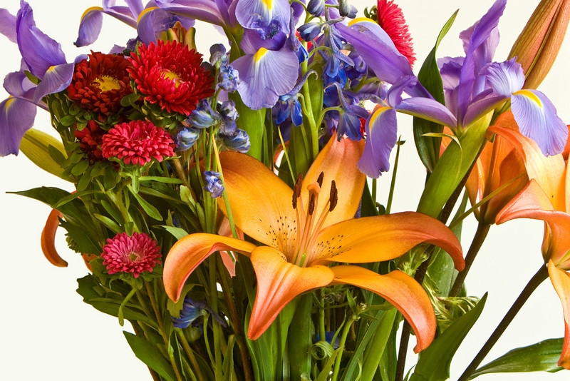 Lilies et al. courtesy of Janet Cady via ProFlowers (highly recommended).