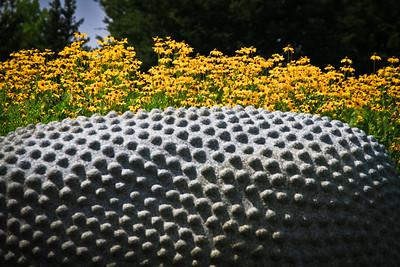 Meijer Garden Aug. 2013