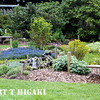 mendocino botanical gardens-14