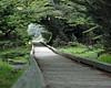 Laguna Pt Boardwalk