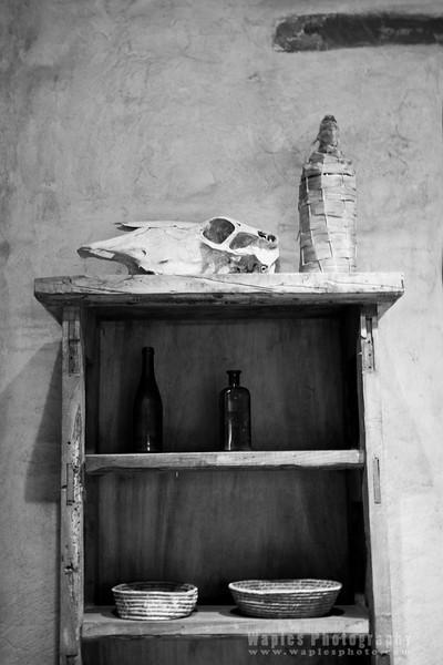 Skull on Shelf