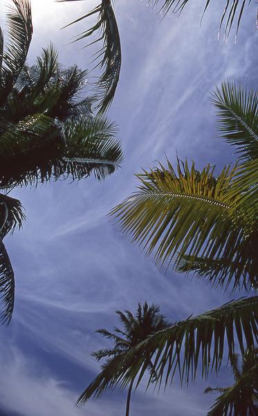 Beautiful Tahitian Sky