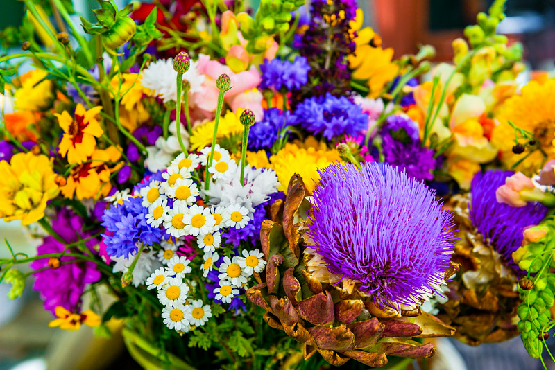 California Wildflowers for you! Going to the farmers market on the weekends is one of the things our family loves to do. These are some farm fresh flowers I captured. Let me know what you think -- anyone know what these are?!?! The fresh fruit and vegetables, and flowers everywhere are great to see and bring home. We usually can't go without a stop to the Kettle Corn guy and the Crepe place!