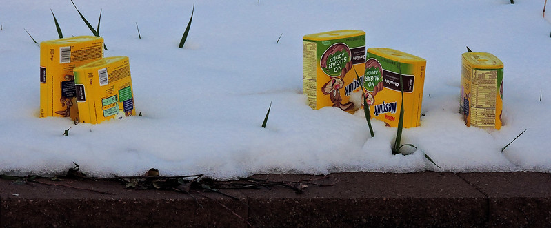 How to Prepare for Spring Freezes
