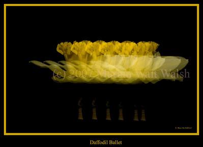 030608-60 daffodil ballet flat